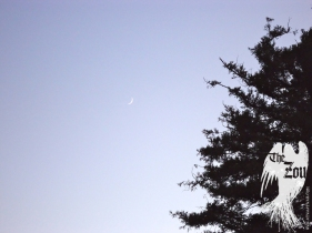 WAXING SOLSTICE MOON REDWOOD